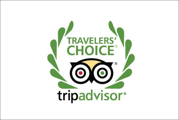 <em>Trip Advisor</em>